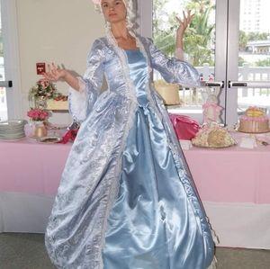 Marie Antoinette Adult Costume Handmade